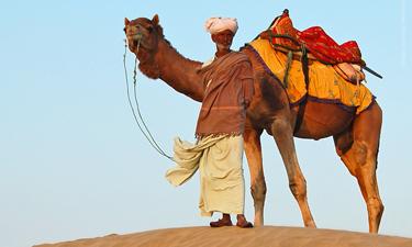 Indien Reisen Rajasthan Kamel Safari